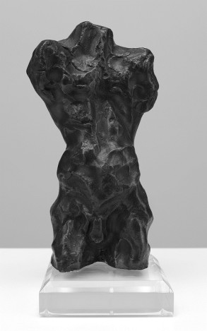 Torso (Bronze-Resin) 24cm x 10cm x 10cm